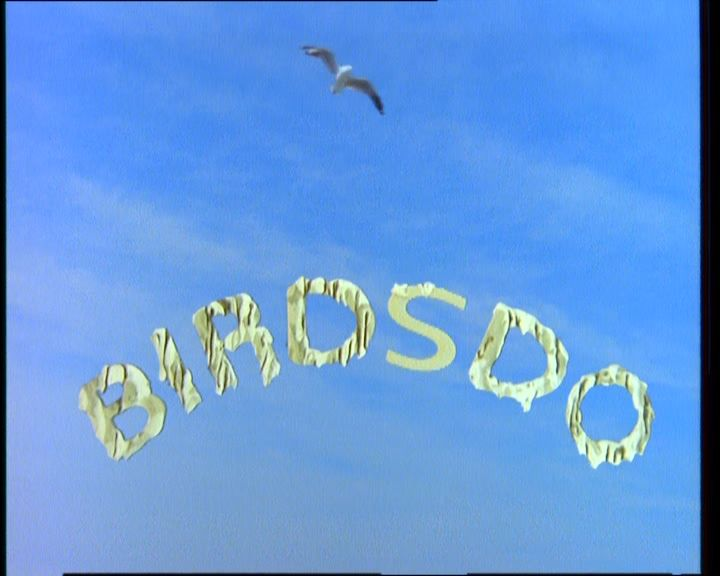Round The Twist Birdsdo.jpg