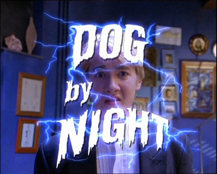 Round The Twist Dog By Night.jpg
